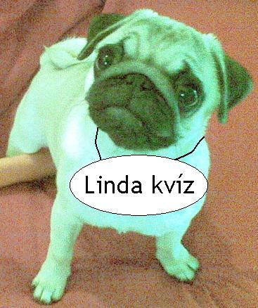 Linda kvíz